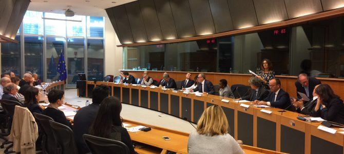 Convocazione Commissione Continentale per l'Europa ed il Nord Africa (Bucarest 17-19 maggio 2018)